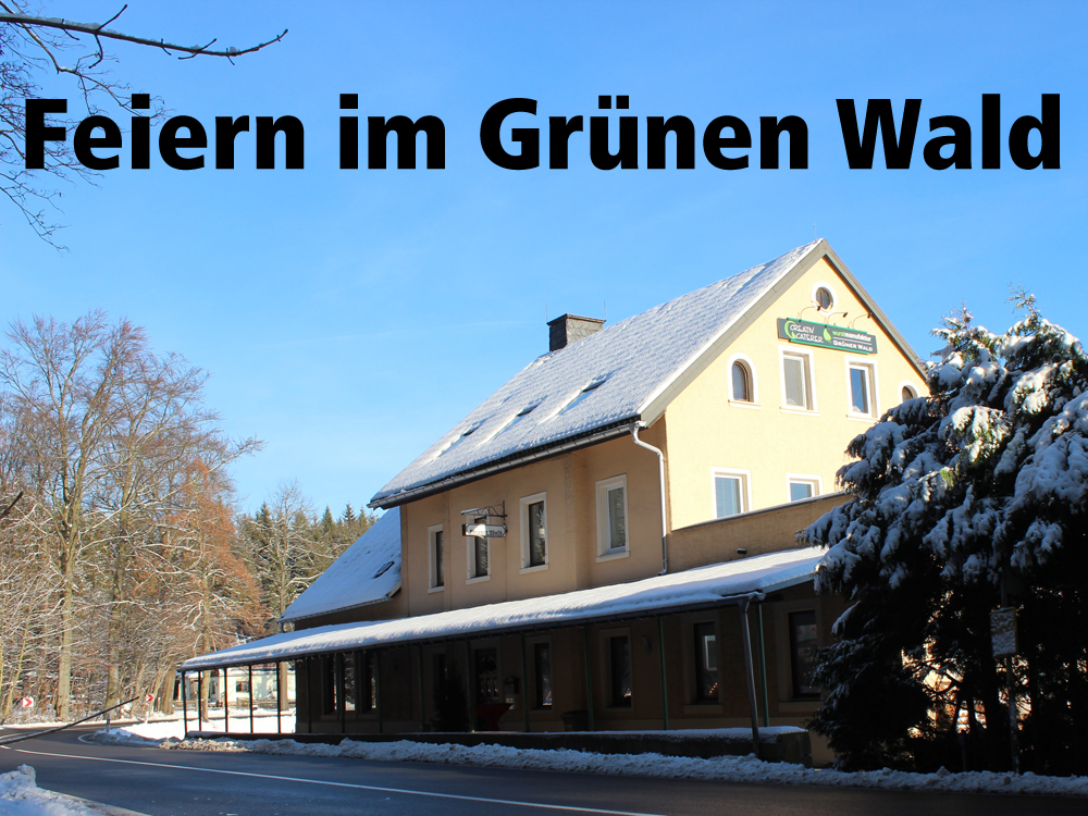 Gruener_Wald_Winter